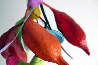 http://cintesdecolors.com/files/gimgs/th-180_P1200639.jpg
